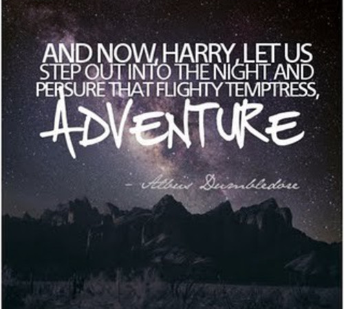 adventures love and harry potter What will happen in harry potter 7: who lives, who dies, who falls in love, and how will the adventure finally end.